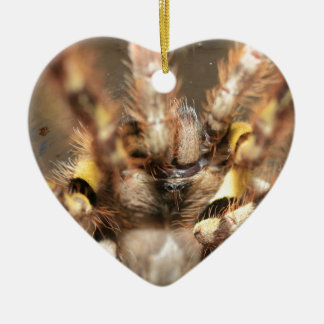 Poecilotheria striata Double-Sided heart ceramic christmas ornament