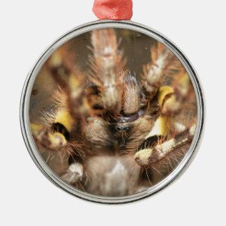 Poecilotheria striata round metal christmas ornament
