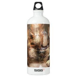 Poecilotheria striata SIGG traveler 1.0L water bottle