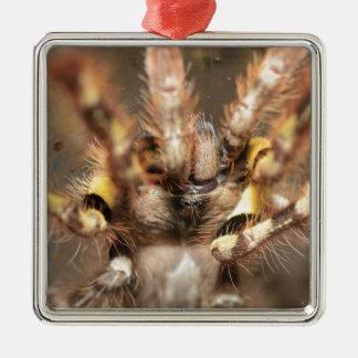 Poecilotheria striata square metal christmas ornament