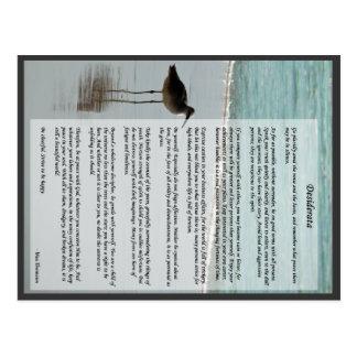 Poema de los desiderátums - gaviota en la escena tarjetas postales