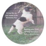 Poema del caballo del perro de la placa por el afl plato para fiesta