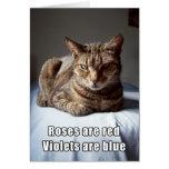 Poema divertido del gato de la tarjeta del día de