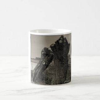 Poesía - amistad taza de café