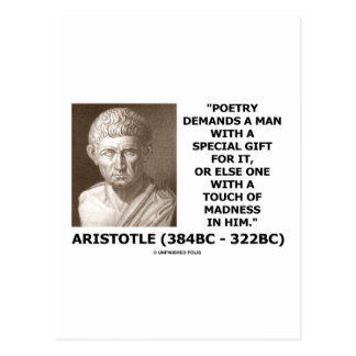 Poetry Gift Touch Of Madness Aristotle Quote Post Cards