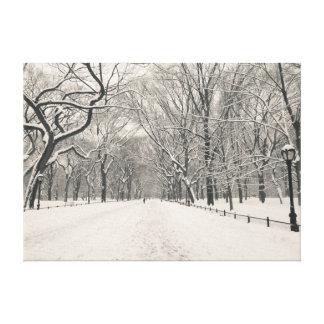 Poet's Walk - Central Park - New York City Canvas Print