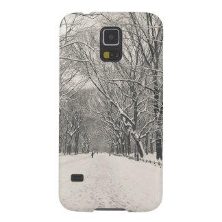 Poet's Walk - Central Park Winter Galaxy Nexus Cases