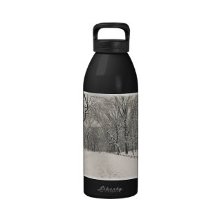Poet's Walk - Central Park Winter Drinking Bottles