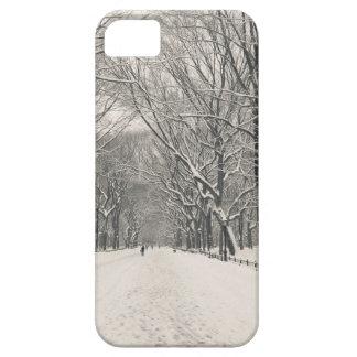 Poet's Walk - Central Park Winter iPhone SE/5/5s Case