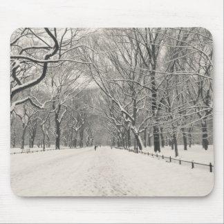 Poet's Walk - Central Park Winter Mouse Pad