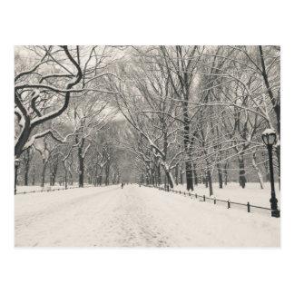 Poet's Walk - Central Park Winter Postcard