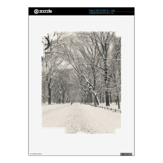Poet's Walk - Central Park Winter Decal For The iPad 2
