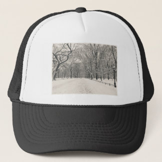Poet's Walk - Central Park Winter Trucker Hat