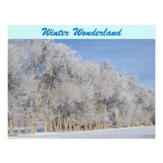 Pogonip Snow On Winter Trees Scrapbooking Paper Letterhead Design