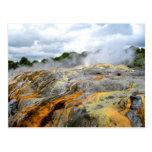 Pohutu Geyser, Rotorua, New Zealand Postcard