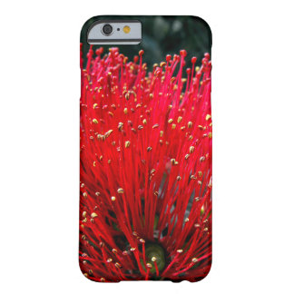 Pohutukawa Blossom Detail Barely There iPhone 6 Case