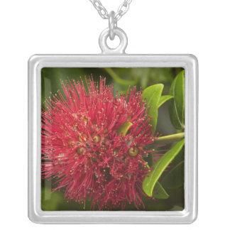 Pohutukawa Flower, Dunedin Necklaces