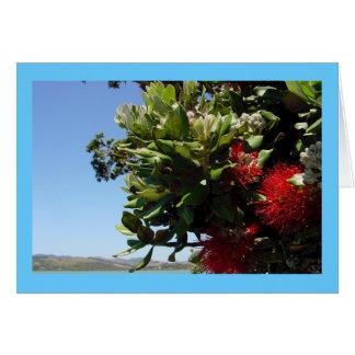 Pohutukawa Tree and Blossom Card
