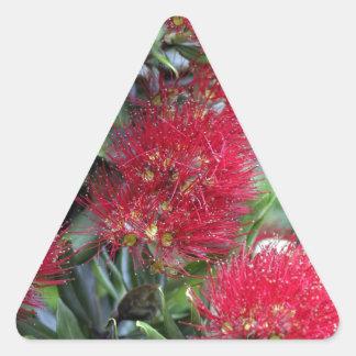 Pohutukawa tree flowering triangle sticker