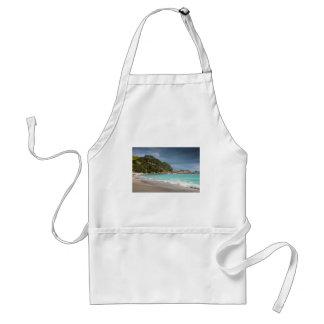 Pohutukawa trees fringe sandy beach adult apron