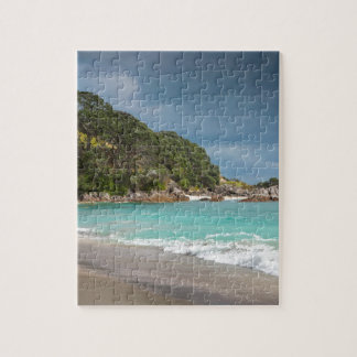 Pohutukawa trees fringe sandy beach puzzles
