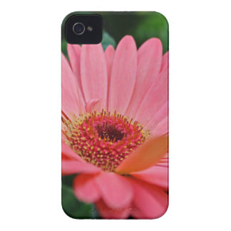 Poignant Memoir iPhone 4 Case-Mate Case