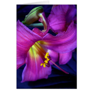 Poignant Poetic Purple Lily Card
