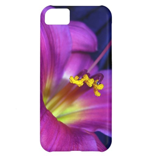Poignant Poetic Purple Lily Case For iPhone 5C