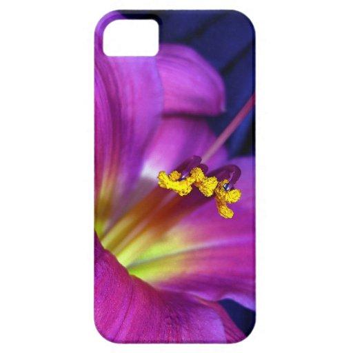Poignant Poetic Purple Lily iPhone 5 Case