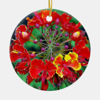 Poinciana (ohai-ali'i) Hawaiian Flower Ornament