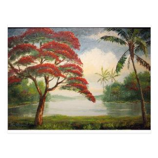 Poinciana real (árbol llamativo) tarjeta postal