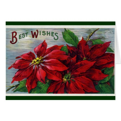 Poinsettia Best Wishes Card