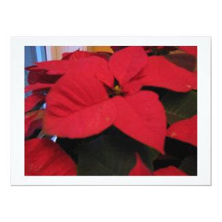 """Poinsettia Christmas card 6.5"""" X 8.75"""" Invitation Card"""