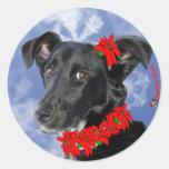 Poinsettia Daphne Sticker