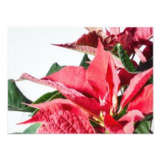 """Poinsettia del navidad invitación 5.5"""" x 7.5"""""""