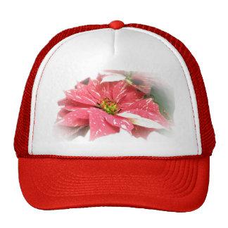 Poinsettia en rojo y blanco gorra