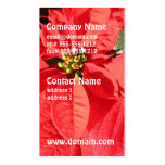 Poinsettia Flowers Business Cards