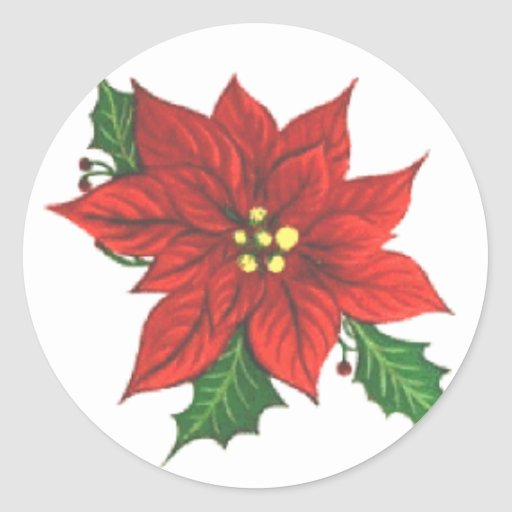 Poinsettia Greeting Card Sticker