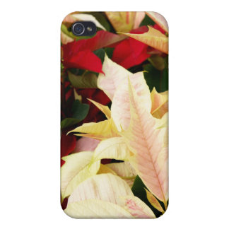 poinsettia covers for iPhone 4