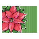 Poinsettia Joy green Postcard