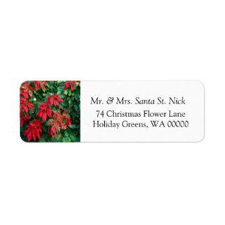 Poinsettia Merry Christmas Card  Mail Labels