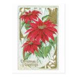 Poinsettia pasado de moda del navidad tarjeta postal