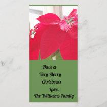 Poinsettia photograph  Christmas card