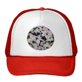 Poinsettia - Pink and White Verigated Hat