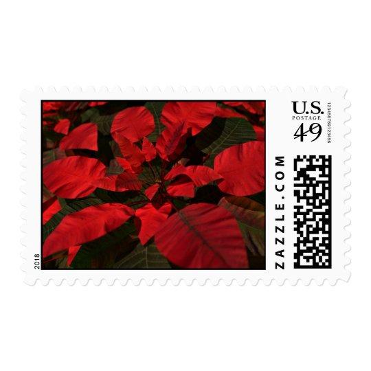 Poinsettia Postage