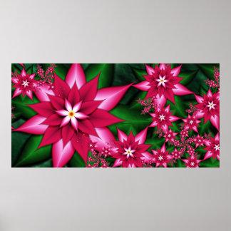 Poinsettia (Poster)