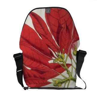 Poinsettia Pulcherrima (colour litho) Courier Bag