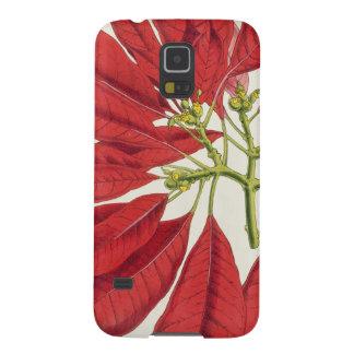 Poinsettia Pulcherrima (colour litho) Galaxy S5 Cover