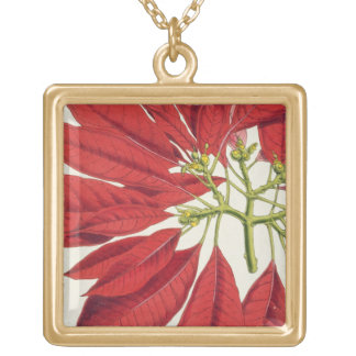 Poinsettia Pulcherrima (colour litho) Gold Plated Necklace
