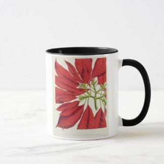 Poinsettia Pulcherrima (colour litho) Mug